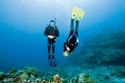 Les formations Adventure Diver PADI ou Advanced Aventurer SSI sont disponibles chez AP Plongée.